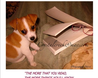Instant Download  Puppy Photo with Dr. Seuss Quote / Nursery Wall Decor Teachers Reading  Aid Whimsical Puppy  Dr Seuss Quote