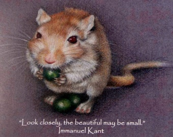 Look closely - gerbil and peas