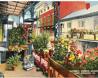 Vintage New Orleans Postcard - A Gallery in the French Quarter (Unused)