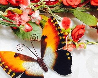 Butterfly Embellishments Autumn Splendor