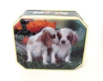 Vintage Puppies Dogs Biscuit Tin, White Spaniel, Fox's England