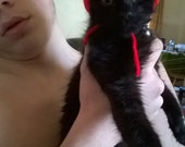Hand knitted cat Santa hat