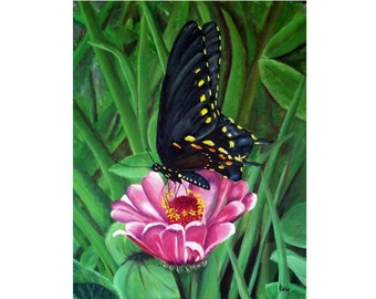 Black Butterfly on Pink Flower - Original Oil Painting, 16x20, Wrapped Canvas, pink flower, nature, butterfly art, oversized, Helen Eaton
