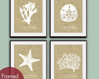 Underwater Sea Coral Collection (Series A2) Set of 4 Art Print (Featured in Coffee Burlap)