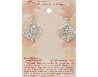 Real Aspen Leaf Dipped In Silver Post Dangle Earrings - Real Dipped Leaves - On Card