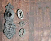 Antique Brass Escutcheon Set, Skeleton Key Plates, Antique Key Plates, Ornate Door Plates, Door Knob Plates, Instant Collection