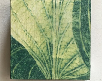 Original Mounted OOAK Woodblock Print Plant Leaves - Hand Pulled Fine Art Print - Ready To Hang Wall Art Hosta Print