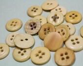 Antique Bone Buttons 20 Underwear Bone Button