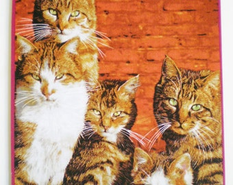 Cats with an Attitude Mousepad
