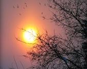 Sunset art print, orange sunset, beautiful sunset, Nature photography