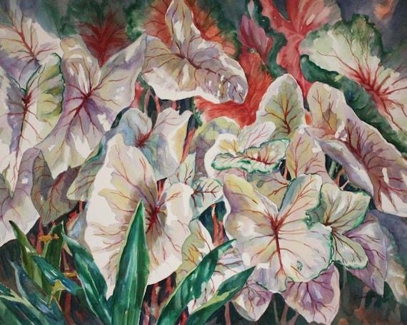 Watercolor, Print, 8 x 10,  Five different choices Decorative art, home decor