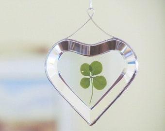Genuine Four Leaf Clover Glass Heart Ornament Botanical Suncatcher One of a Kind Valentine Unique Wedding Gift
