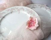 Vintage Premiere April Rose Pink Dinner Plates Set of Two