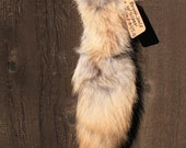 Recycled Wolfy-Looking Coyote Fur Tail for Keychain or Belt Loops With Celtic Silver Rivet
