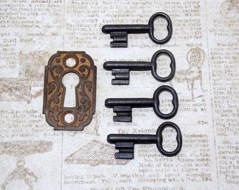 Black Skeleton Key Uncut Blank Locksmith Keys