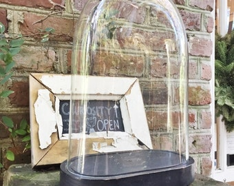 Victorian Display Dome with Wooden Base
