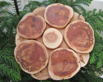 Sale, Natural Juniper Wood Trivet, Wood Coaster, Wooden Coaster, Wooden Trivet, Juniper Hot Plates, Natural Wood Trivet