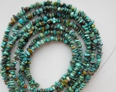 Natural  turquoise  chips (4-6x1-4mm), natural  turquoise, full strand(15.5 inches), turquoise chip beads