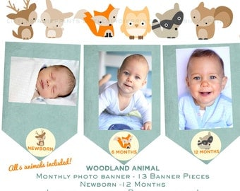 Woodland Birthday Party Decorations  Woodland First Birthday Party, Woodland Monthly Photo banner Month Circles Fox Deer Raccoon Owl Boy
