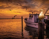 Fishing Boat and Gulls at Sunrise by Aransas Pass Harbor in Corpus Christi Bay by the Gulf of Mexico No.0578 A Fine Art Seascape Photograph