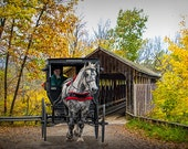 Wooden Covered Bridge and Amish Horse and Buggy in Autumn No.03388 A Fine Art Country Rural Landscape Photograph