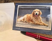 CLEARANCE, Dog Note Cards, Dog Stationery, Golden Retriever Cards, Dog Cards, Retriever Cards, Retriever Note Cards, Happy Dog Cards
