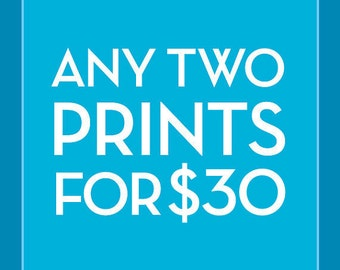 Pick Any Two 12x16 Prints for 30 Dollars