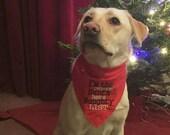 I'm The Reason Santa Has A Naughty List Christmas Dog Bandana