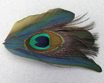 Blue Macaw Feather Hair Piece