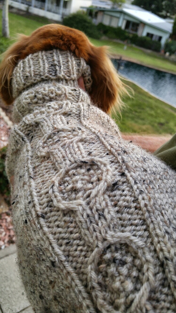 Pdf download knit pattern for the ez banjo cable mini dachshund pdf download knit pattern for the ez banjo cable mini dachshund sweater bankloansurffo Gallery