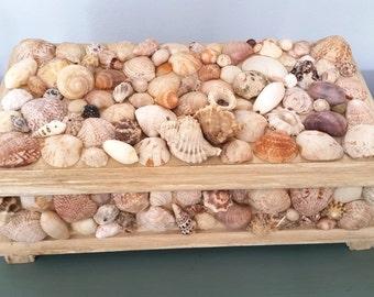 """Ariel""""s Treasure Box"""
