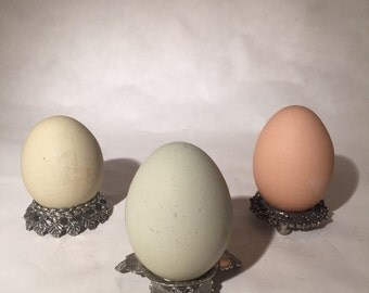 Metal Egg Holders