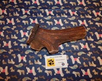 "Organic Jumbo Elk Antler Dog Chew ""Made in Montana"" (Lot J28)"