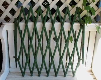 Vintage Antique Wood Baby Gate Pet Gate Accordion Style Trellis Picture Display Green