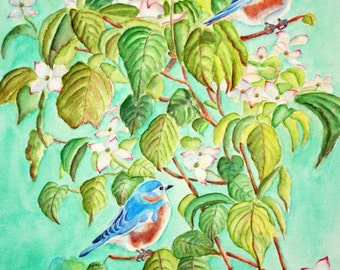 Bluebirds Watercolor Giclee Print, Large size, turquoise, blue, green, white, dogwood tree, bird pair