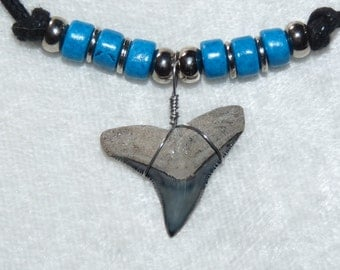 Fossil bull shark tooth necklace with bright blue beads and adjustable cord 03