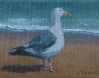 "Sale Seagull Original Oil Painting Beach Bird Seascape Santa Barbara Art  Modern Impressionist Painting 5x7"" Canvas  Jennifer Boswell"