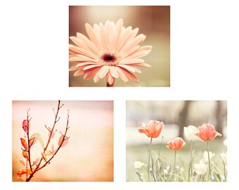 Peach Flower Set, floral photos nature peach nursery wall art girls room photography botanical pictures white coral pretty photographs