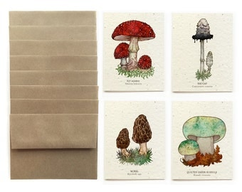 Wild Mushroom - Set of 8 Plantable Seed Greeting Cards