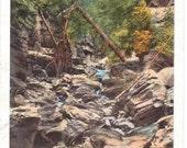 Black Hills, South Dakota, The Gorge - Vintage Postcard - Unused (BBB)
