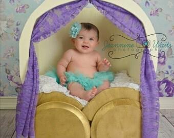 Cinderella Carriage Photo Prop