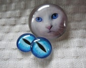 Cat cabochon,cat eyes, white cat jewelry set