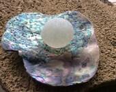 White Bubble w Abalone Plate Genuine Beach Sea Glass ABB-J20-2