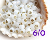 TOHO Seed beads, size 6/0,  Silver Lined Milky White, N 2100, round, japanese glass - 10g - S341