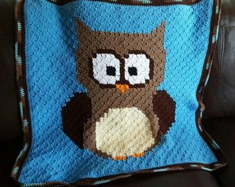 Hooty the Owl Crochet Baby Blanket