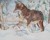 Coyote in Winter - original watercolor in tan, grey, green and white