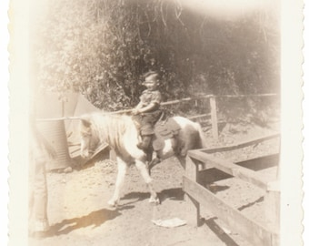 portrait of a young boy Shetland Pony social realism found snapshot photo vernacular photograph