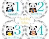 Panda Bear Month Stickers for Baby Boy Monthly Baby Stickers Panda Nursery or Baby Panda Baby Shower Gift Baby Stickers for New Baby Boy