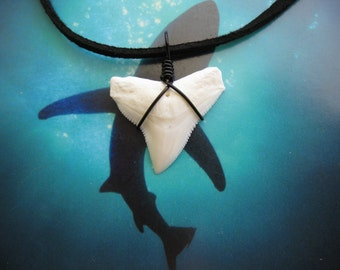 """Shark Tooth Necklace, Modern day Bull Shark tooth, Suede leather cord 20"""", Black wire wrapped"""