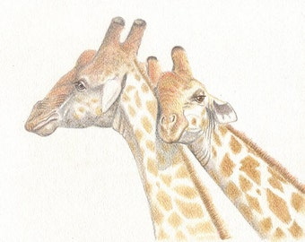 Giraffes, 8x10 original artwork, colored pencil, art & collectibles, african animals, home decor, home living, art earthspalette